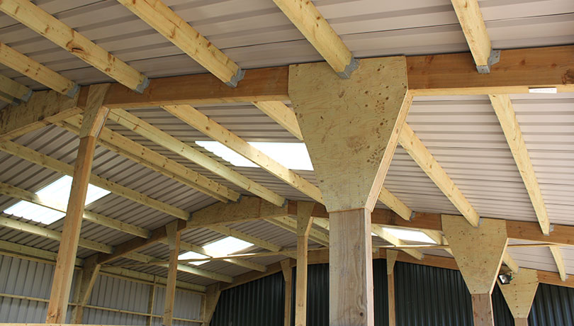 Agricultural Timber Purlins